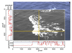 Digital image processing of whitecap coverage on the ocean surface